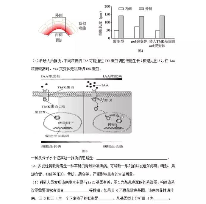 C:\Users\Administrator\Desktop\2021北京市高考生物压轴卷及答案解析\9.webp.jpg