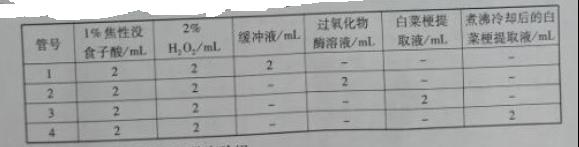 2016年江苏高考生物试题答案解析