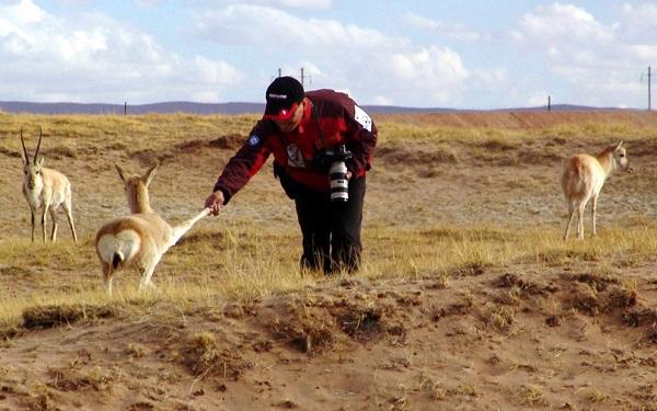 野生动物保护专业是文科还是理科 就业方向有