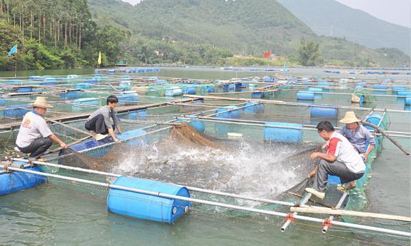 【2018青岛渔业博览会】2018渔业综合技术专业就业前景和就业方向分析