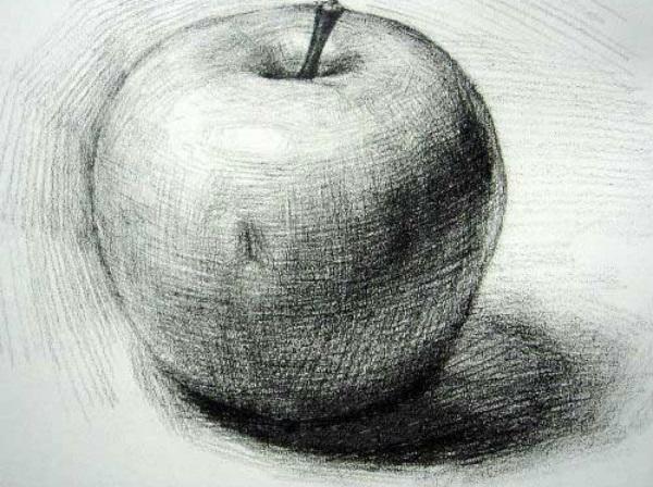 摆了一组比较简单的静物,包括:可乐塑料瓶子、苹果、橘子和小西红柿、白色衬布,都是经常考到静物。所以平时应该多练习画。动笔前应该先分析整幅画面的构图、色调,哪里最暗,哪亮一些做到心中有数,给排出一个1、2、3的大顺序来。    第一步:打形。重点:1.整个画面的构图,2.