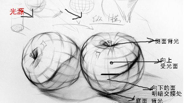 苹果素描图片步骤新手静物苹果的画法_高三网