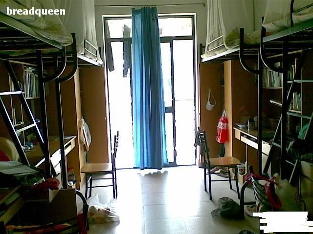 1、艺术班住宿不错,有空调。就是蚊子之多之大之毒远远大于你的想象,蚊子块没两礼拜别想消掉有网卡,每月60元,有时会断网每天10点半断电,不包括空调和电风扇。 2、新世纪宿舍是三室一厅的,有淋浴的应该。现在学校都在全力推进空调安装工作,新生来的话,宝山校区应该都安装差不多了。  3、一些楼有空调和卫生间、一些有全天热水澡、食堂很多有几个很不错比其他的学校好多了、环境上海排得上号的、现在住在校本部宝山校区。宿舍里是有每层两个开水器的,有淋浴但没有热水,空调正在装,新生来估计就装好了。 4、一般没有空调没有独卫