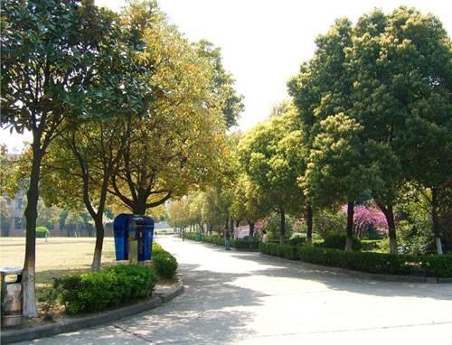 太湖创意职业技术学院宿舍怎么样图片