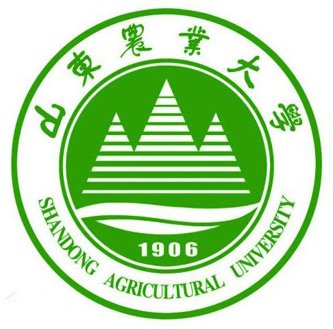 综合 3 中国石油大学(华东) 理工 4 山东师范大学 师范 5 青岛大学 综