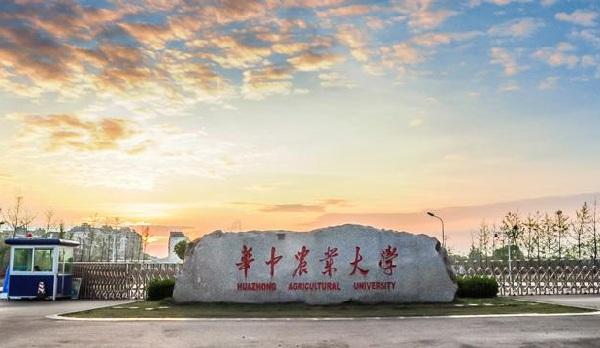 华中农业大学地址师资力量如何