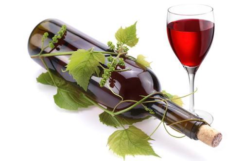 葡萄与葡萄酒工程专业大学排名