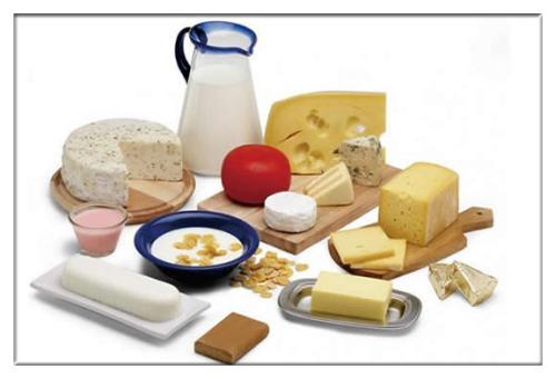 食品质量与安全专业大学排名