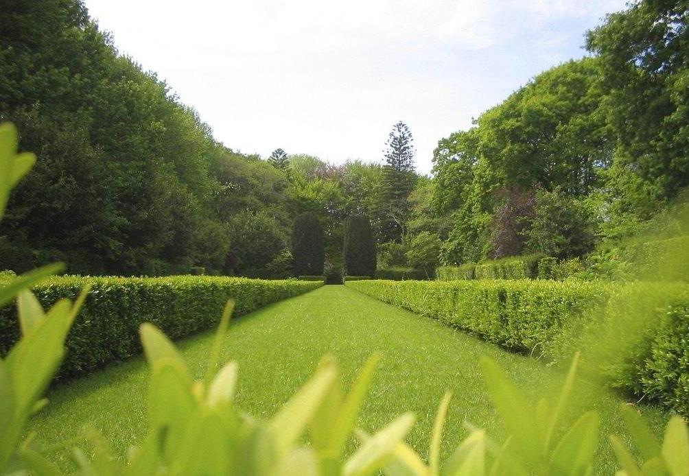 园林专业大学排名