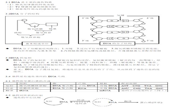 高中生物必修二知识结构框架图