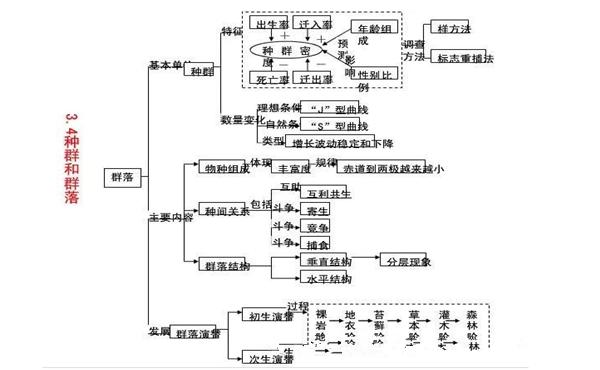 高中生物必修三知识结构框架图