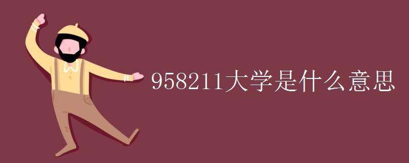 958211大学是什么意思