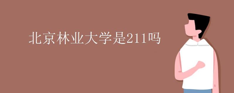 北京林业大学是211吗
