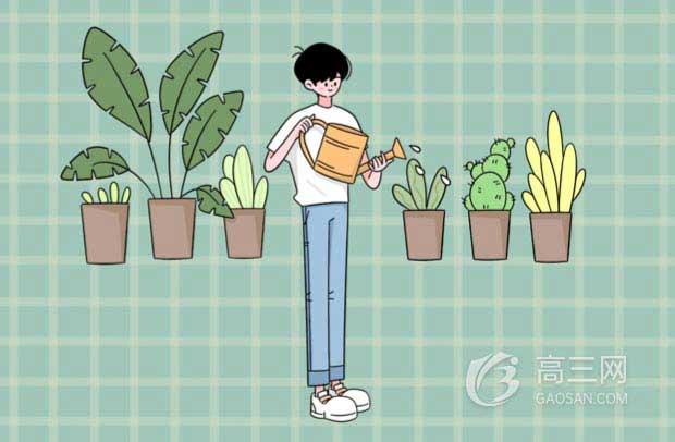 2020广东高考480分能上什么大学