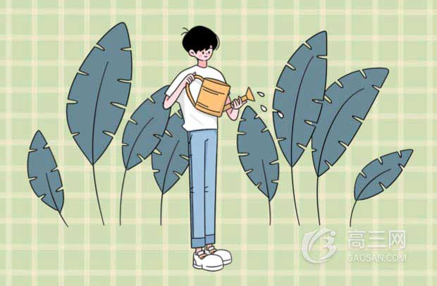 教育部發布2020年寧夏高校名單