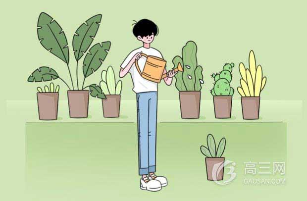 2020年北京高考志愿填報流程及相關政策