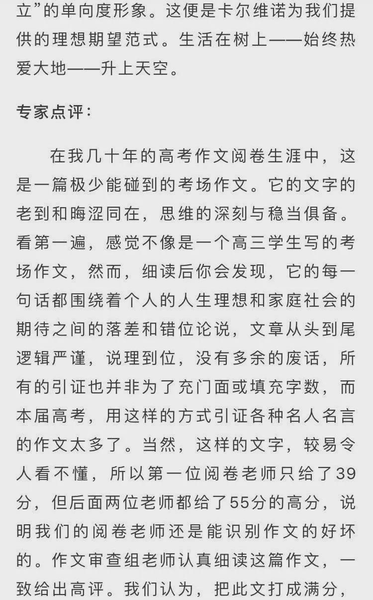 2020年浙江高考满分作文及点评