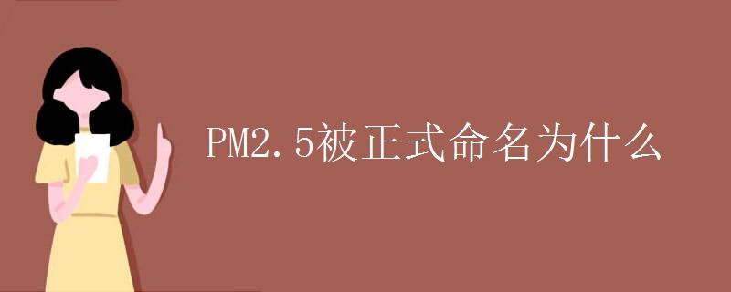 PM2.5被正式命名為什么