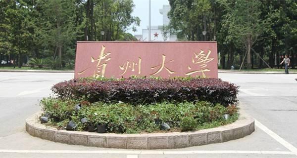 [2017年贵州大学艺术类专业校考成绩查询]2017年贵州大学艺术类专业校考成绩查询时间及入口