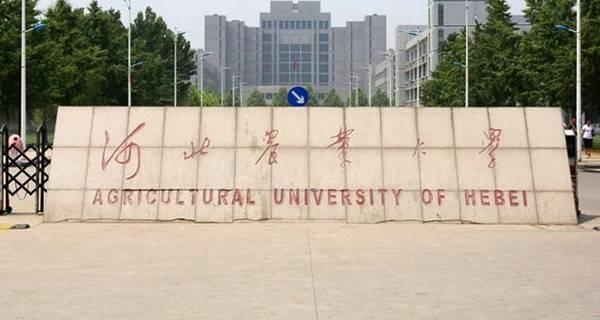 河北农业大学校门