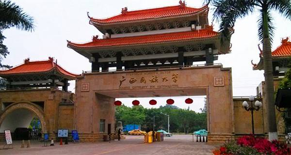 广西民族大学相思湖学院|广西民族大学是985吗?广西民族大学是211吗?