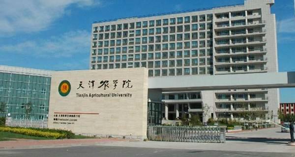 天津农学院校门