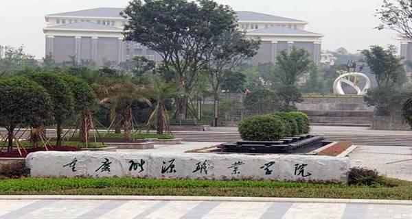 重庆能源职业学院校门