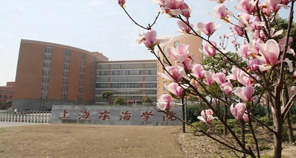 上海东海职业技术学院考多少分才能上