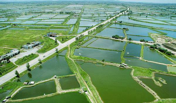 水产养殖技术专业