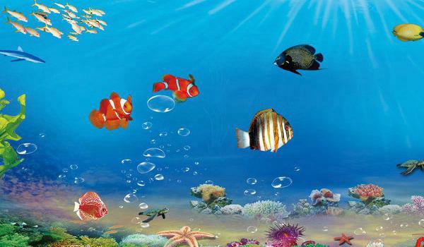 水族科学与技术专业
